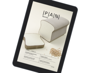 Revista PAN - número 2 (ebook)