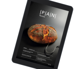 Revista PAN - número 1 (ebook)